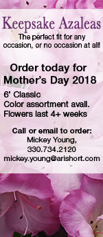 Keepsake Azaleas, Order Now for Mother's Day